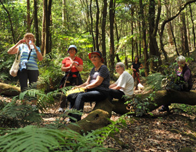 A group of women having a rest during bush walking